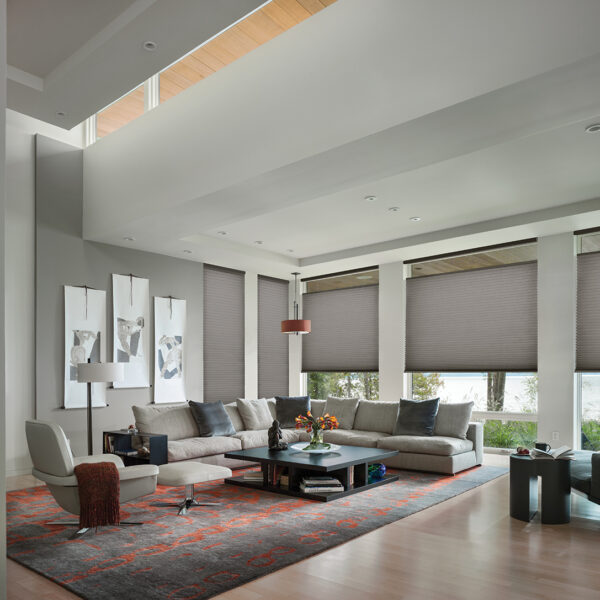 modern living room shades